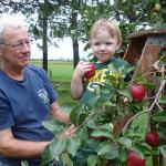 Picking apples with Grandpa - September 15th