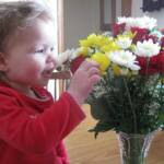 Smelling the flowers Daddy gave Mommy - February 14th